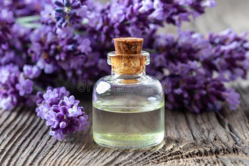 Una bottiglia dell'olio essenziale della lavanda con lavanda fresca immagini stock libere da diritti