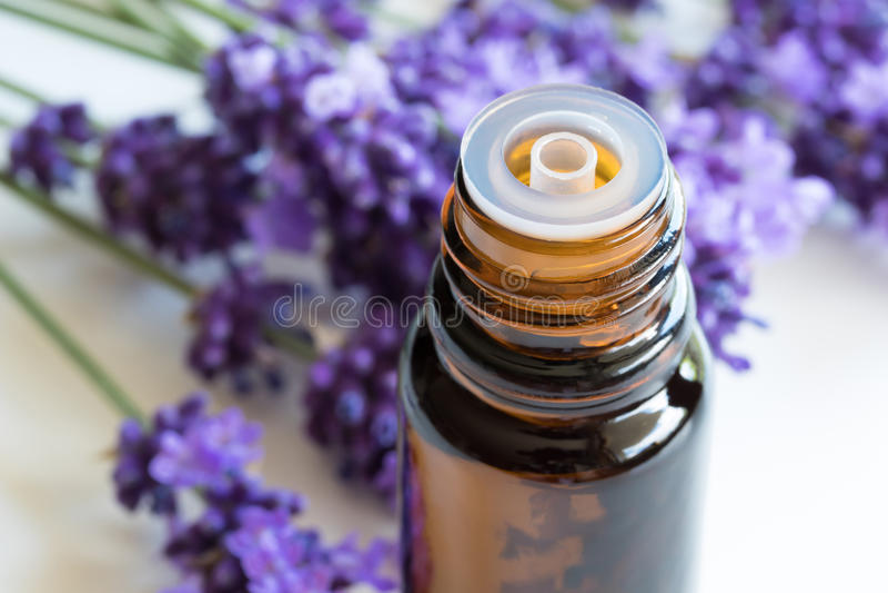 Una bottiglia dell'olio essenziale della lavanda su un fondo bianco fotografie stock
