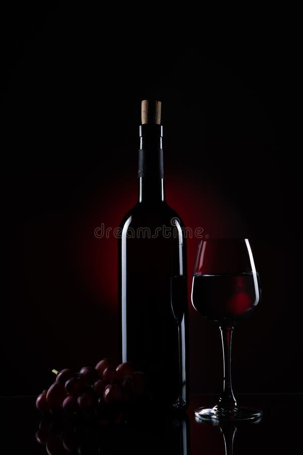 Una bottiglia di vino rosso con la vite e un vetro di vino immagine stock libera da diritti