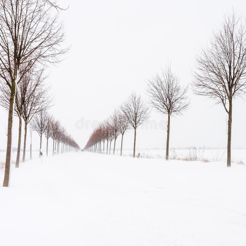 Una bufera di neve pesante sulla strada un giorno di inverno freddo immagini stock