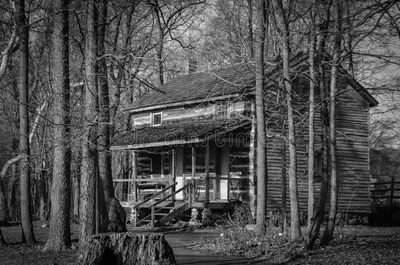 Una cabina rústica en el bosque fotos de archivo libres de regalías