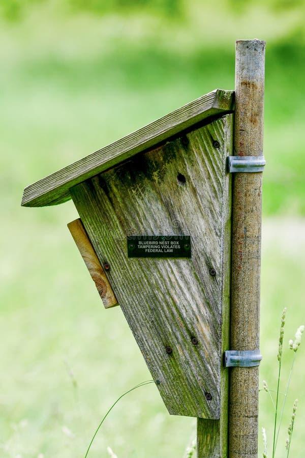 Una caja aseada del pájaro azul fotos de archivo