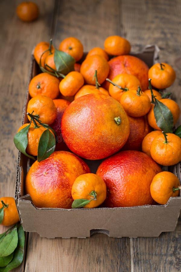 Una caja de cartón del invierno fresco da fruto con las naranjas rojas y las mini mandarinas fotos de archivo