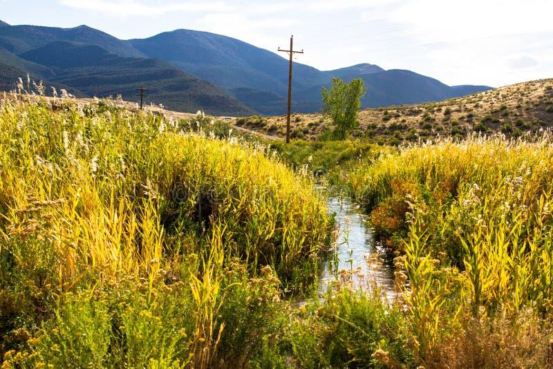 Una cala atraviesa las plantas del humedal y las montañas en marrones parquean NWR en Colorado foto de archivo