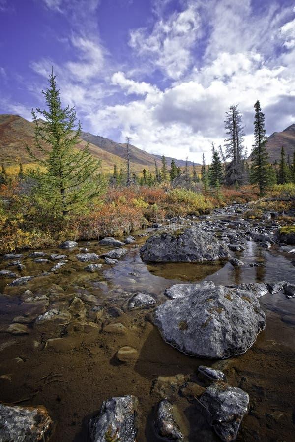 Una cala de Alaska en la caída fotografía de archivo libre de regalías