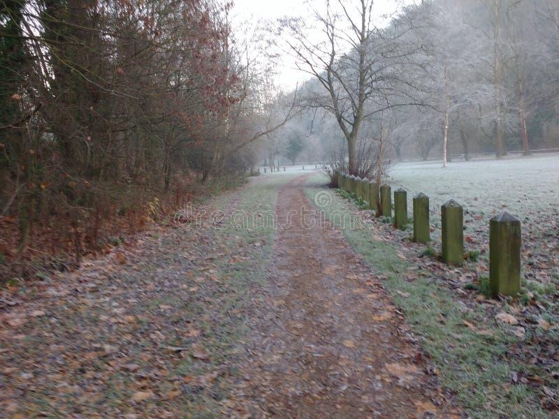 Una caminata en el parque imagenes de archivo