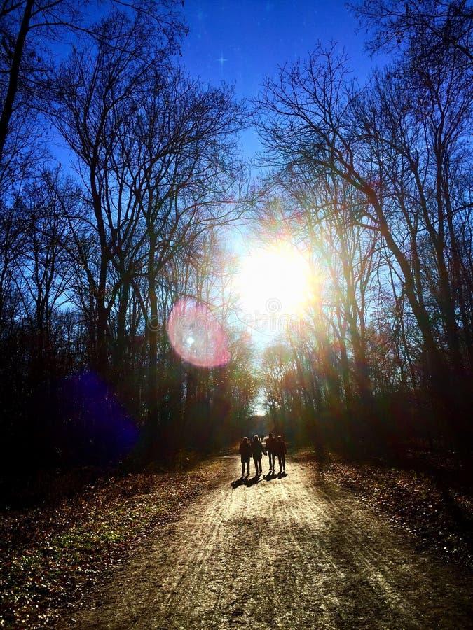 Una camminata nella sosta fotografie stock libere da diritti