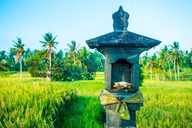 Una capilla hindú en el medio de un campo del arroz cerca de Ubud, Bali, adentro foto de archivo libre de regalías