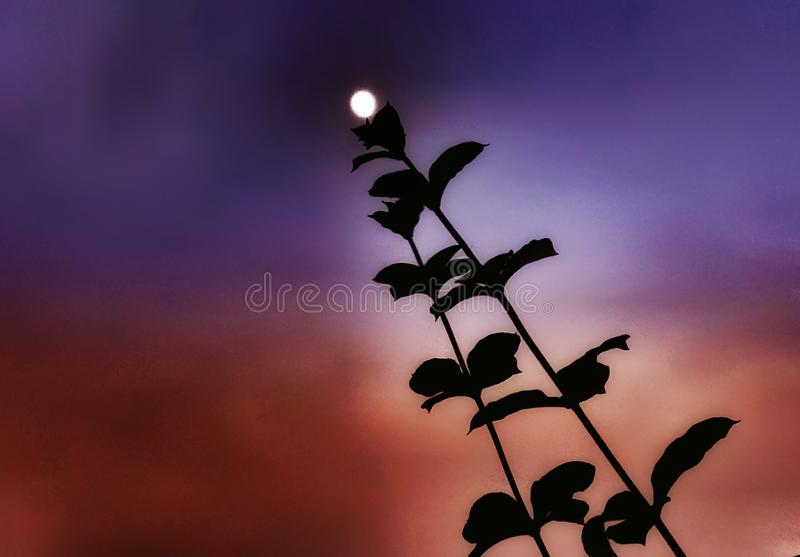 Una captura artística de una Luna Llena hermosa fotos de archivo