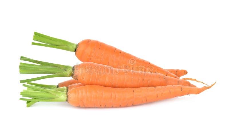 Una carota su fondo bianco fotografia stock libera da diritti