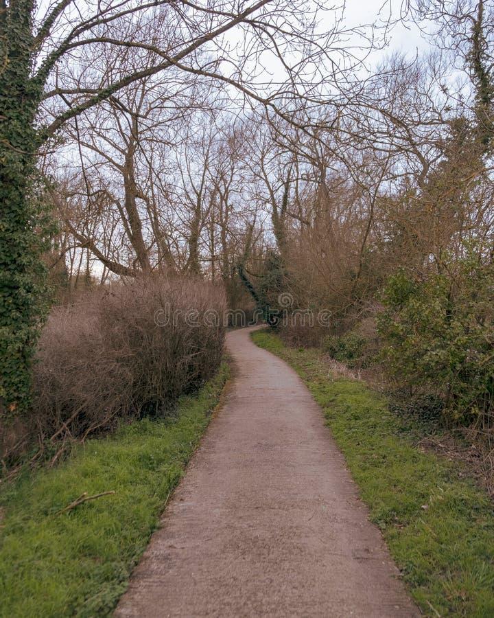 Una carretera con curvas que pasa a través de un parque demasiado grande para su edad foto de archivo libre de regalías