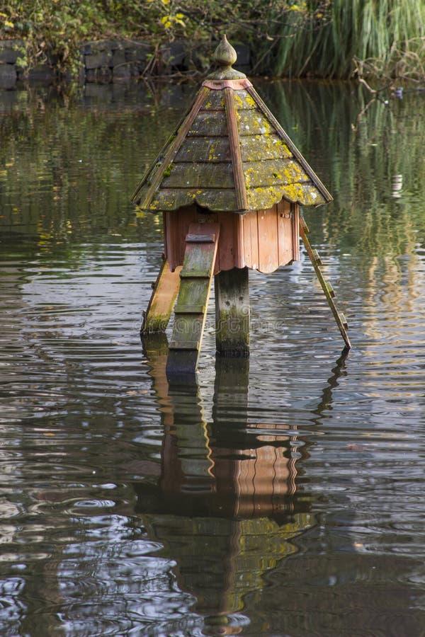Una casa grande del pato en el santuario de las aves de caza en Ward Park en el condado de Bangor abajo en Irlanda del Norte imagen de archivo