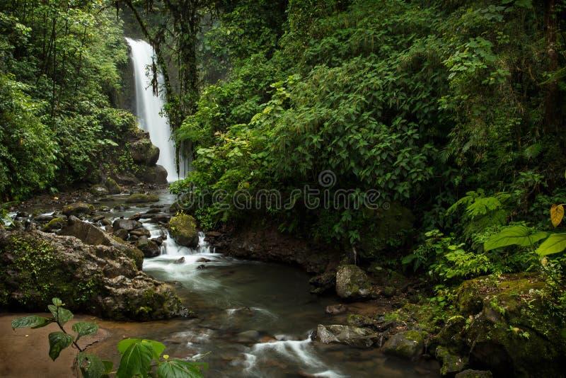 Una cascada asombrosa en la selva tropical foto de archivo libre de regalías