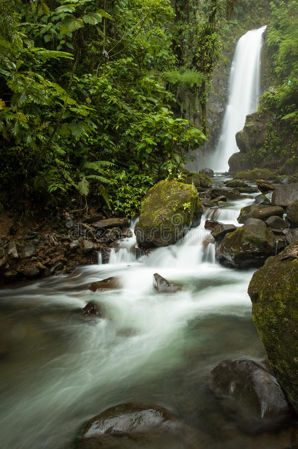 Una cascada asombrosa en la selva tropical fotos de archivo libres de regalías