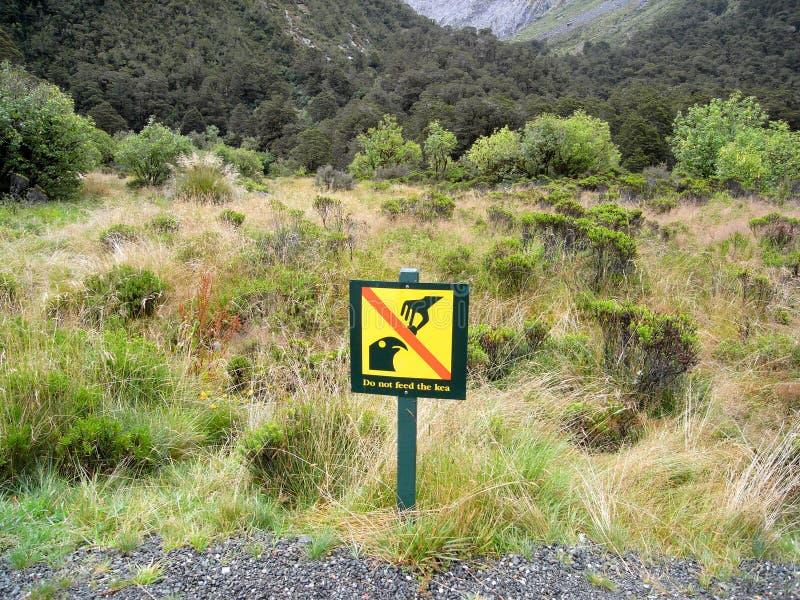 Una cascada en Milford SoundSignage no alimenta el kea fotos de archivo