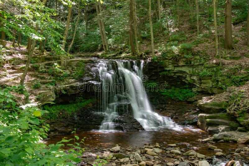 Una cascada pacífico que fluye en el bosque fotografía de archivo