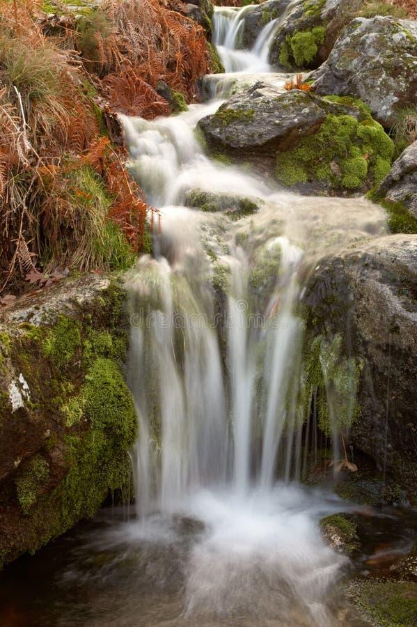 Una cascata dell'acqua fotografie stock libere da diritti