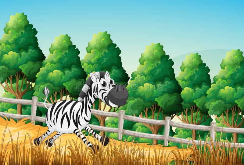 Una cebra que corre en el bosque ilustración del vector