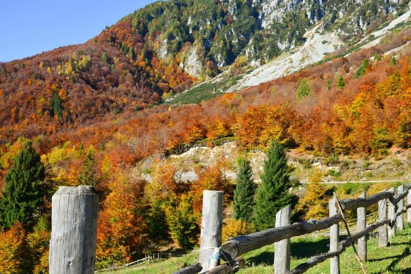 una cerca en las montañas entre los colores del otoño foto de archivo