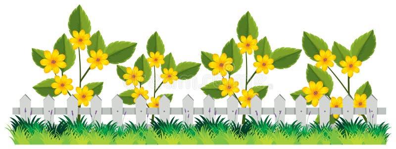 Una cerca hermosa de la flor ilustración del vector