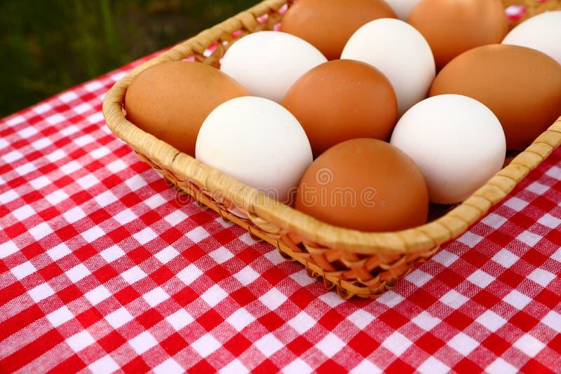 Una cesta de huevos blancos y marrones en un mantel a cuadros rojo-y-blanco fotos de archivo libres de regalías