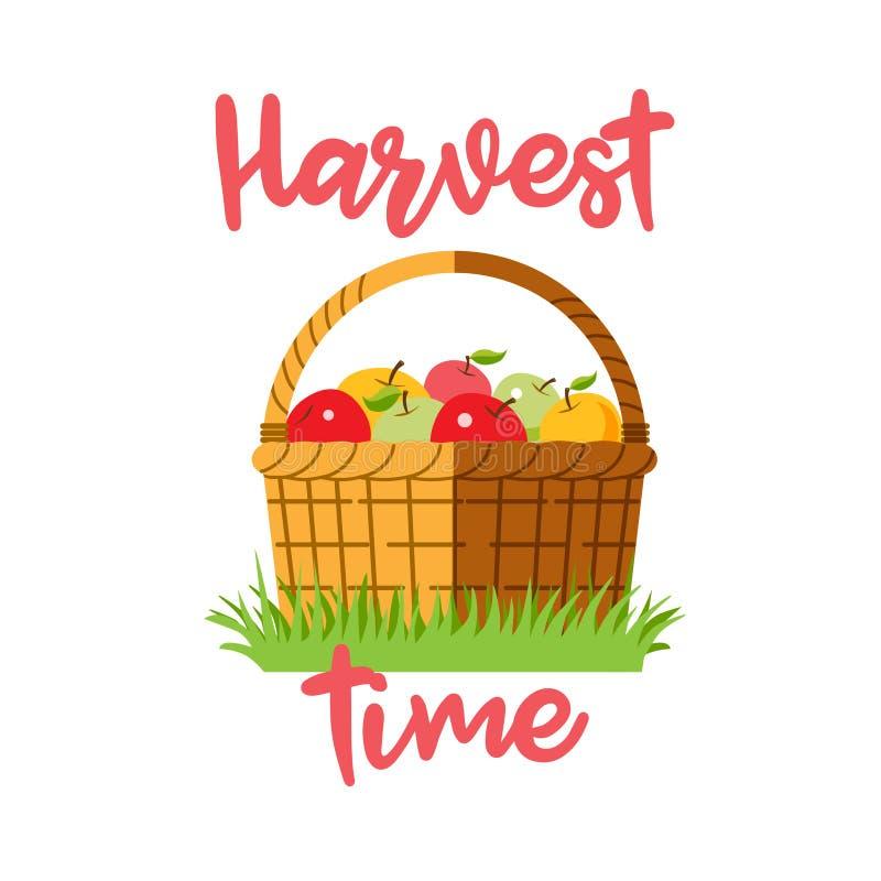 Una cesta de manzanas en la hierba foto de archivo