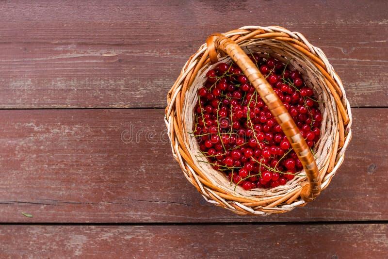 Una cesta de pasa roja jugosa madura en fondo de madera Bayas jugosas frescas de la pasa roja en una cesta de mimbre Copie el esp imagen de archivo