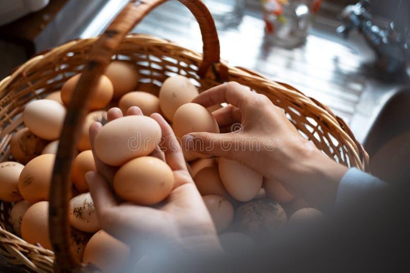 Una cesta por completo de huevos del pollo imagen de archivo libre de regalías