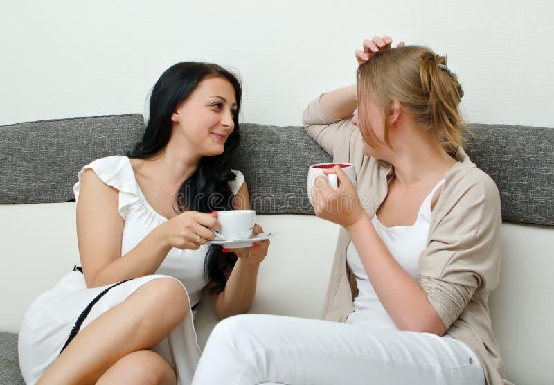 Una chiacchierata dei due amici delle donne immagine stock libera da diritti