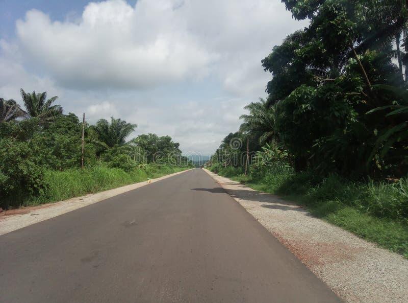 Una chiara strada con vegetazione ricca fotografie stock libere da diritti