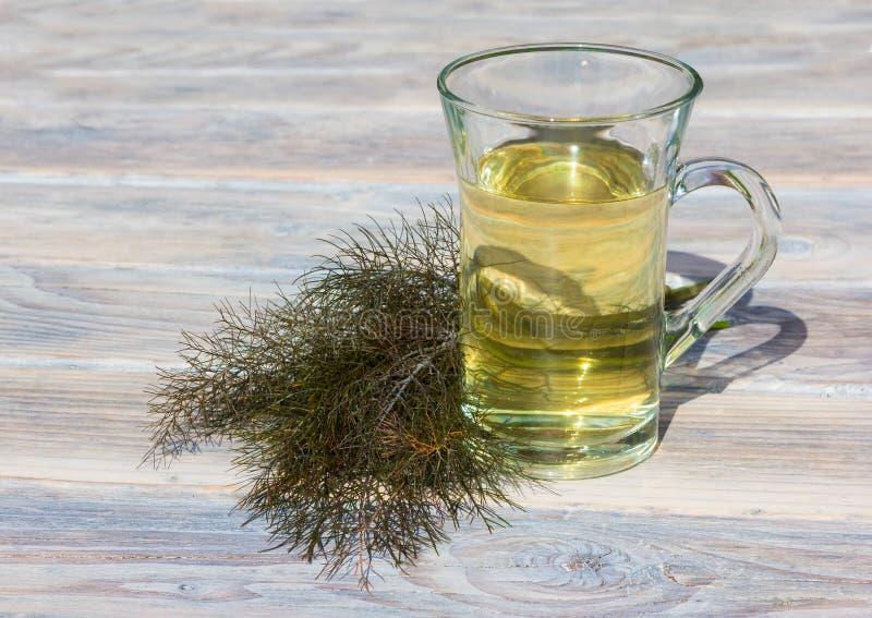 Una chiara tazza del tè di erbe del finocchio fotografie stock