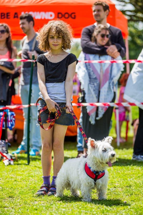 Una chica joven con un perro - montaña del oeste blanca Terrier en la exposición canina de Hampstead Heath imagen de archivo