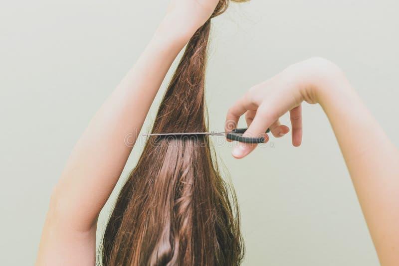 Una chica joven decidía cortar su pelo En las manos de sostener un manojo de pelo y de tijeras Pelo largo de Brown imagen de archivo