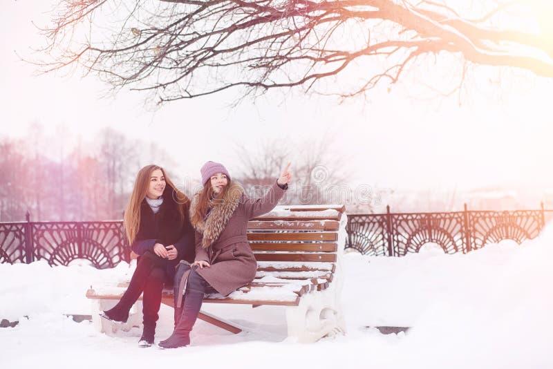 Una chica joven en un parque del invierno en un paseo Días de fiesta de la Navidad en t foto de archivo