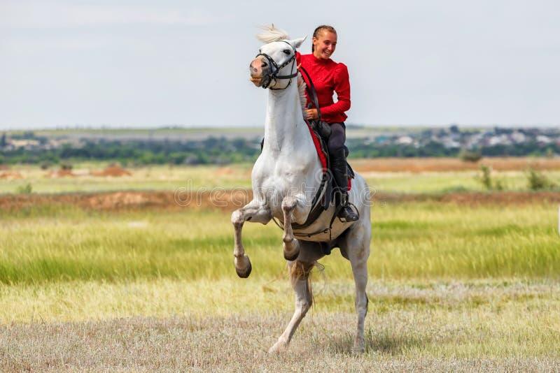Una chica joven entrena al jinete para realizar trucos en caballos y pone sus piernas traseras de su caballo foto de archivo