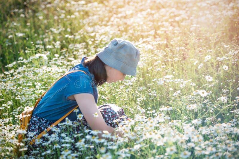 Una chica joven hermosa se sienta en un campo de la margarita - un photogra del verano imagenes de archivo
