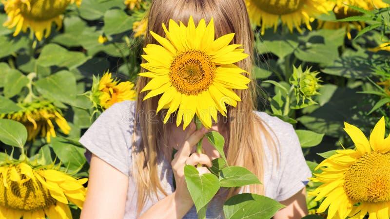 Una chica joven oculta detrás de un girasol fotos de archivo libres de regalías