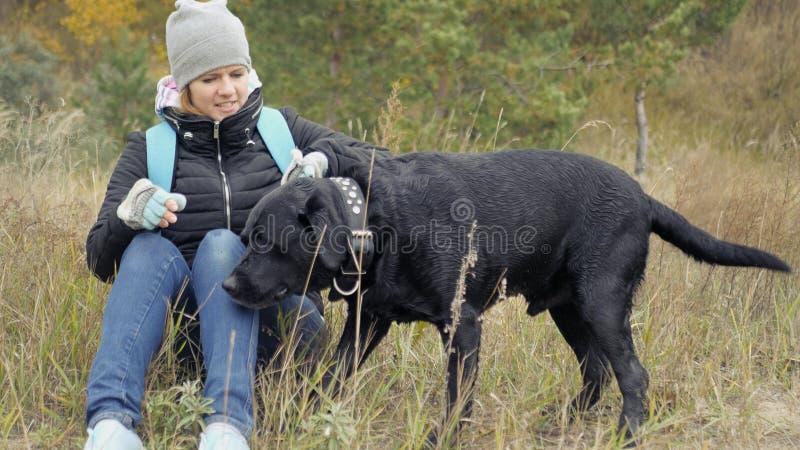 Una chica joven toma su perro para el cuello y quiere poner su cercano foto fotografía de archivo libre de regalías