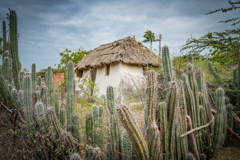 Una choza auxiliar vieja - cerca Curacao Views del cactus imagenes de archivo