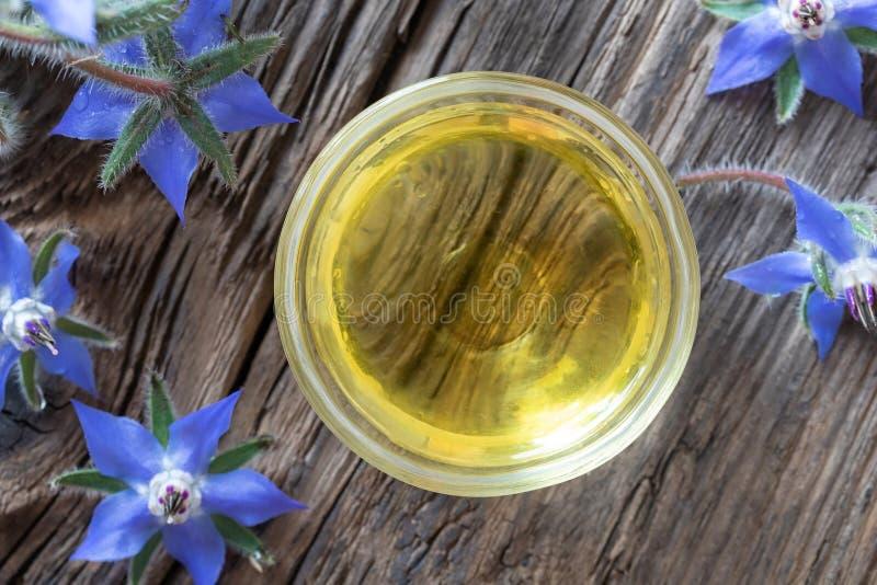 Una ciotola di olio di borragine con la pianta di fioritura, vista superiore fotografia stock