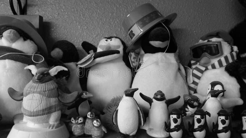 Una colección de pingüinos que se sientan en un estante, en blanco y negro imagen de archivo libre de regalías