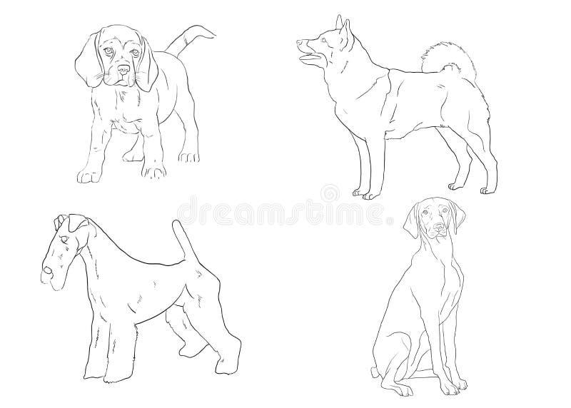 Una collezione di cani della razza di schizzi Disegni isolati della mano Illustrazione di vettore illustrazione vettoriale