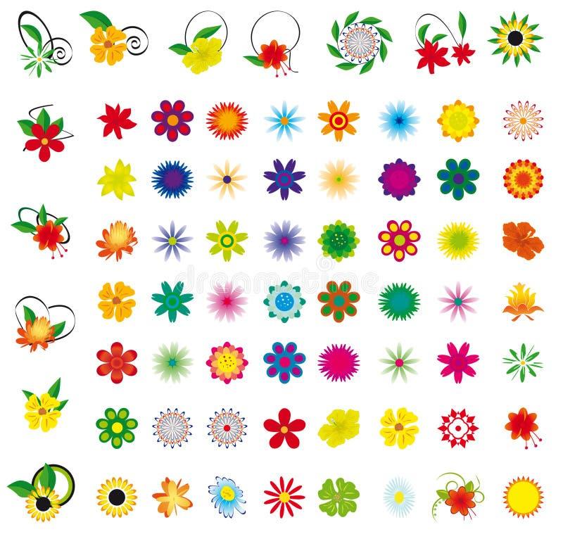Una collezione di fiori illustrazione di stock