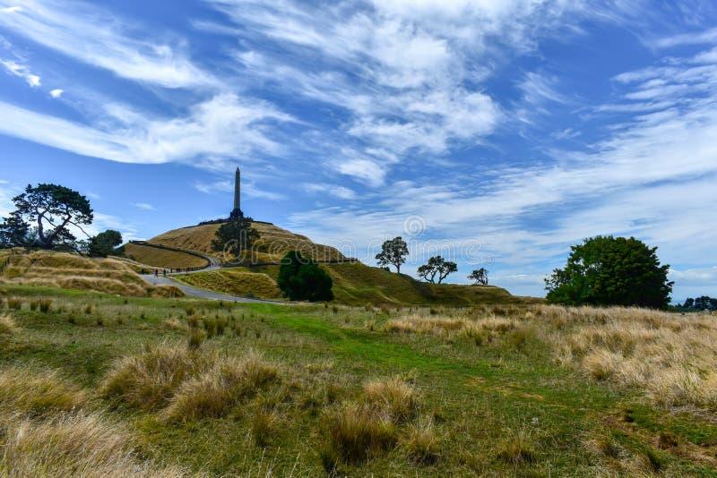Una collina Maungakiekie Auckland dell'albero fotografia stock libera da diritti