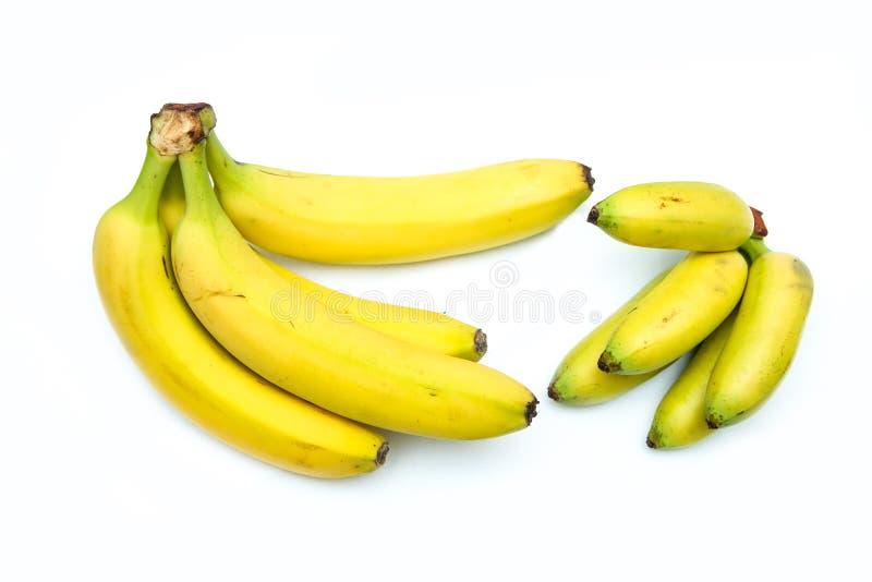 Una comparación de dos manojos de plátanos maduros imágenes de archivo libres de regalías