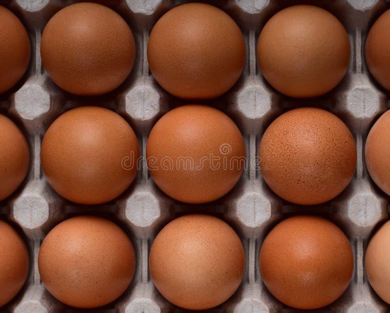 Una composizione quadrata di nove uova marroni del pollo con i lati uguali su una scatola fotografia stock libera da diritti