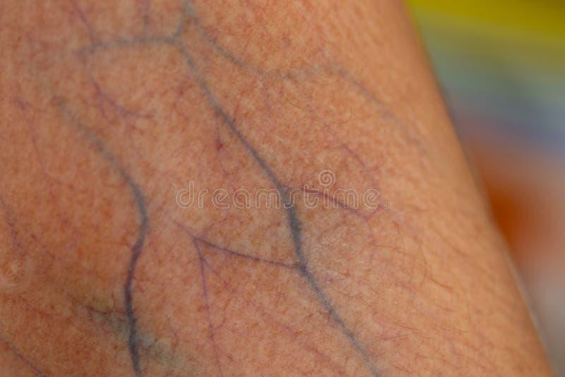Una comprobación del tejido, nervios, tendones as mano fotografía de archivo