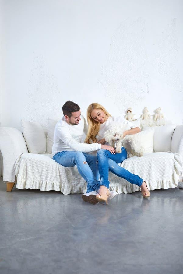 Una coppia con un cane a natale fotografia stock
