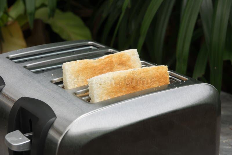 Una coppia di pani tostati di croccante nel tostapane, primo piano fotografia stock
