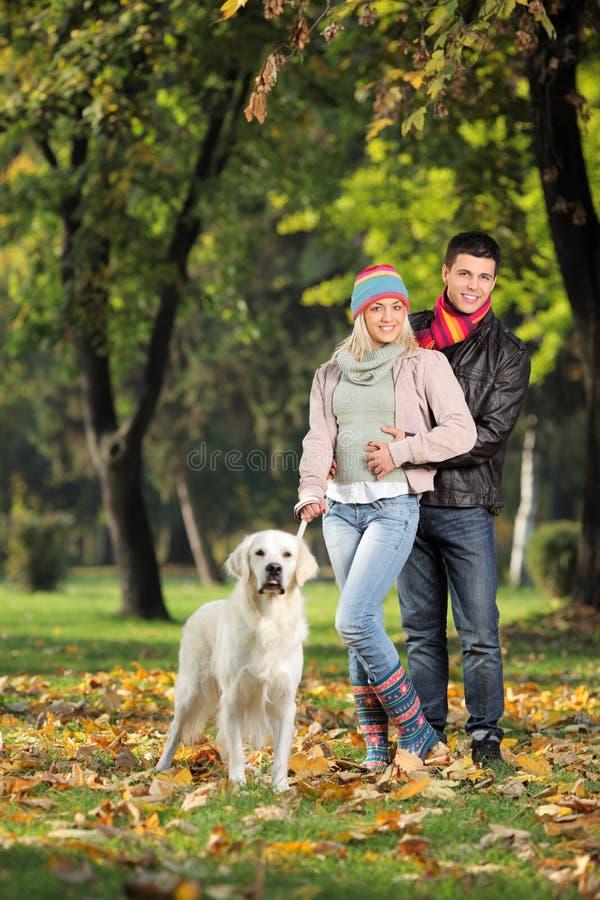 Una coppia sorridente ed il loro cane che propongono nella sosta immagine stock